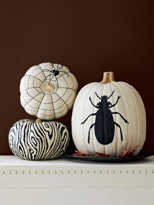 CLX-black-and-white-pumpkin-v2-mdn[1].jpg